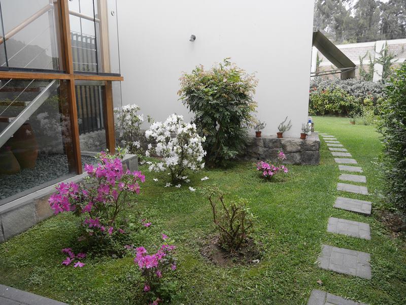34 de 41: Jardín lateral con azaleas que es vista de la escalera