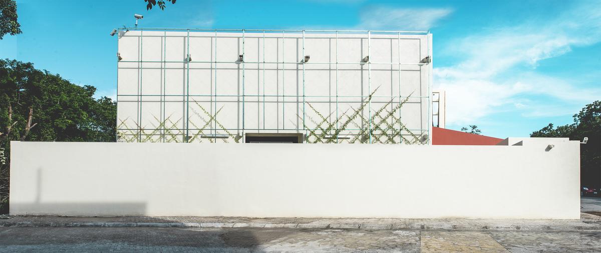 4 of 47: muro verde ( ya viene )