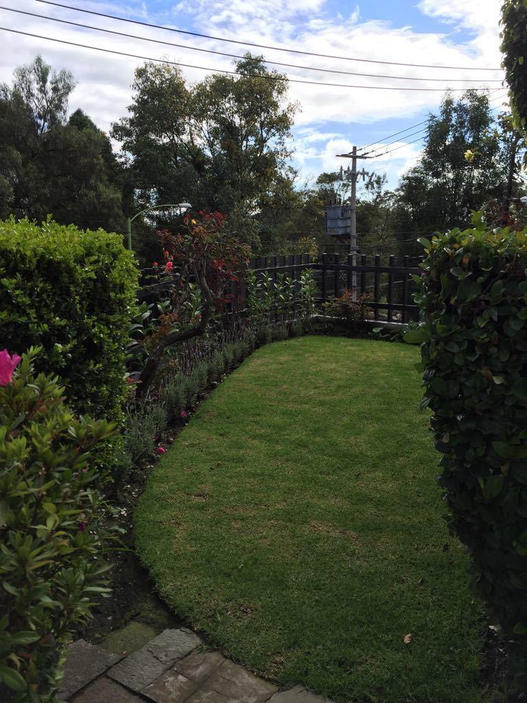 18 de 19: jardin posterior