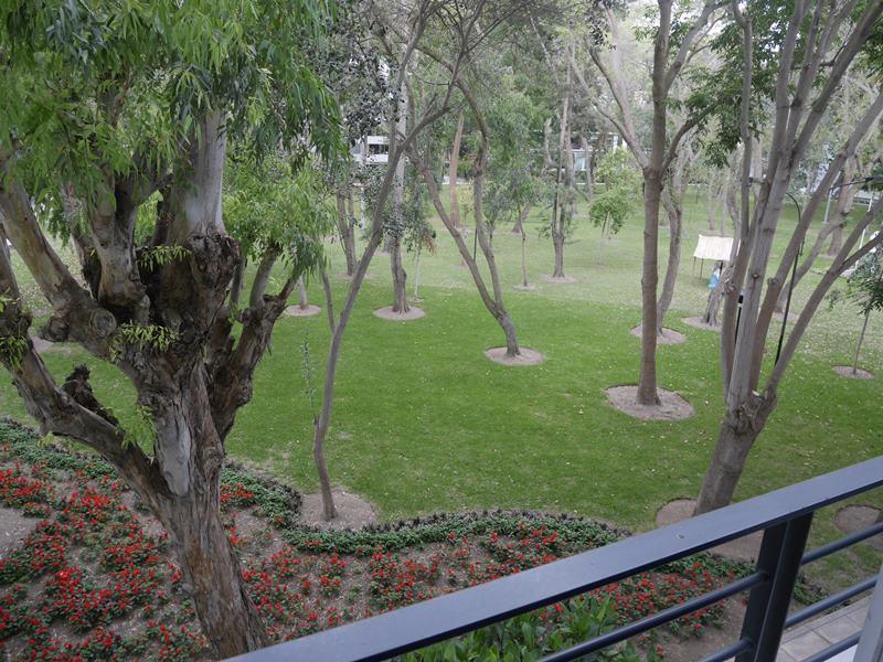 15 de 37: Vista Directa a Parque desde sala, comedor  y dorm principal