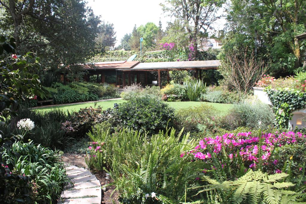 2 de 8: jardin