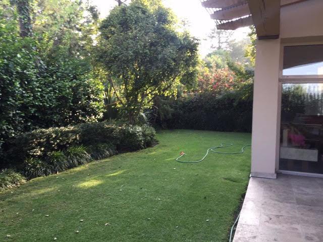 6 de 16: Jardin