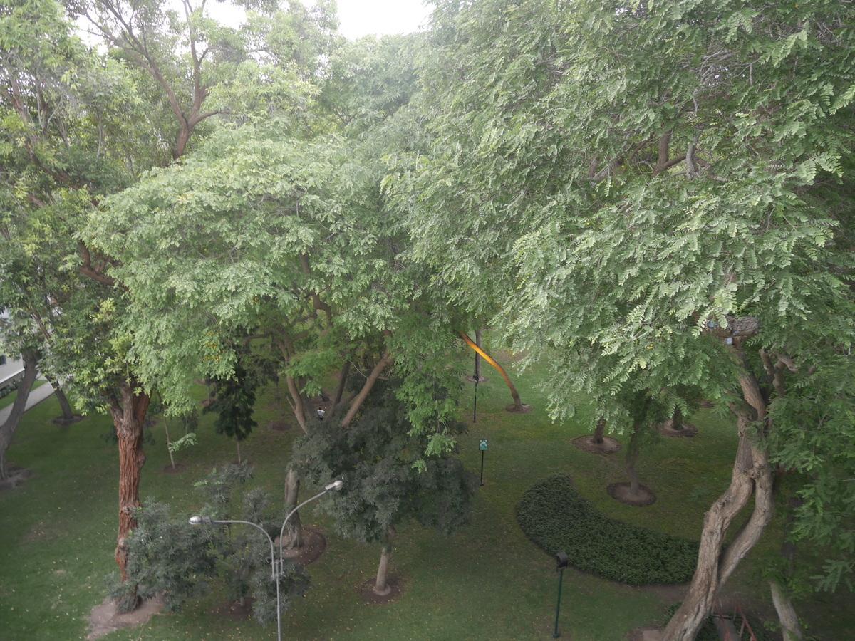 18 de 21: Vista real desde la sala