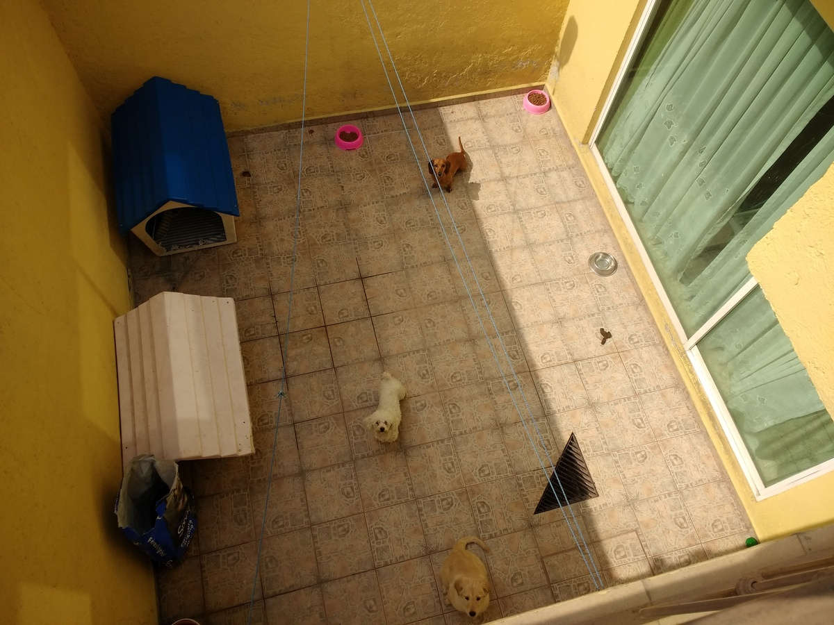 20 de 21: Patio con acceso por comedor y área de lavado.