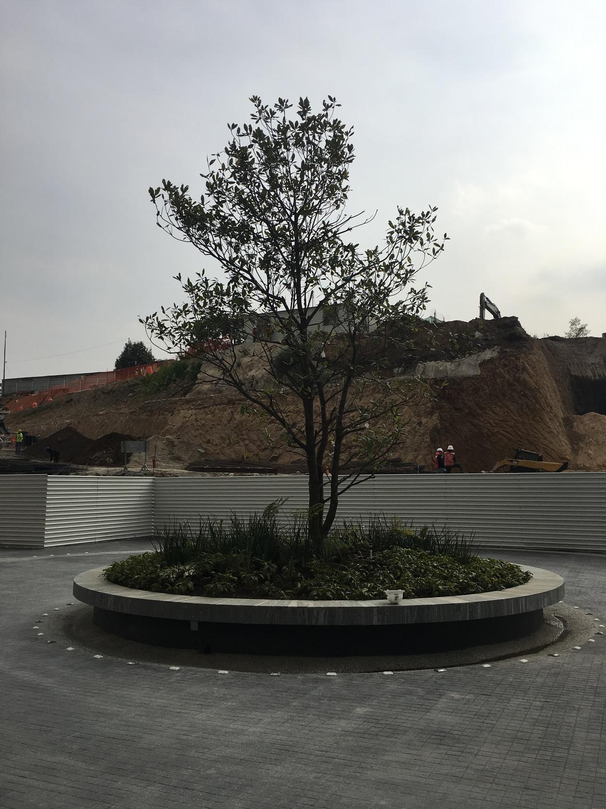 2 de 22: Glorieta para estacionamiento de residentes y visitas
