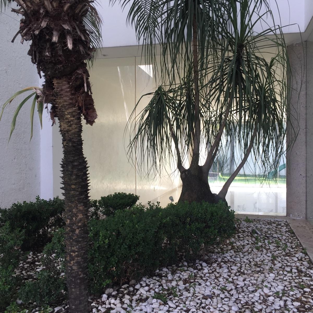 6 de 43: jardin interior