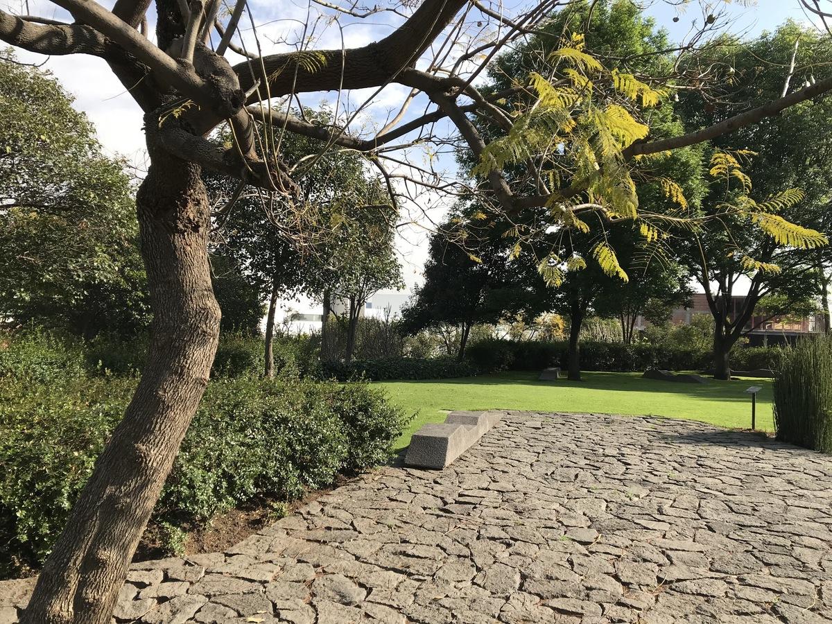 8 de 11: Arquitectura del paisaje en sus áreas verdes