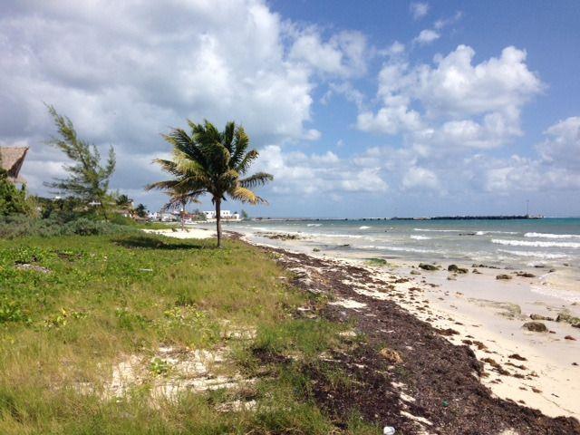 2 de 9: terreno en venta frente la playa