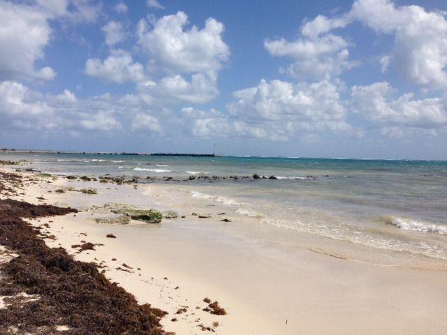 3 de 9: terreno frente al mar
