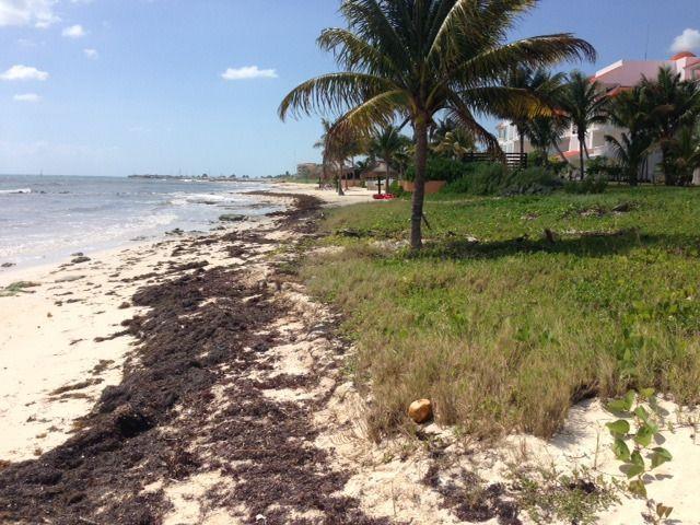 4 de 9: venta terreno con playa