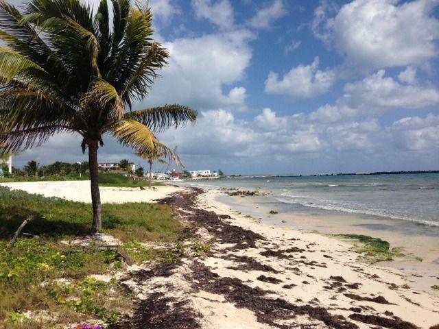 5 de 9: terreno con playa en venta puerto morelos