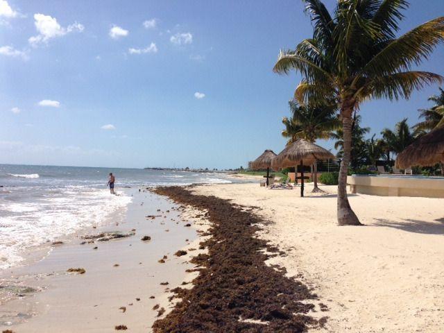 7 de 9: terreno con playa