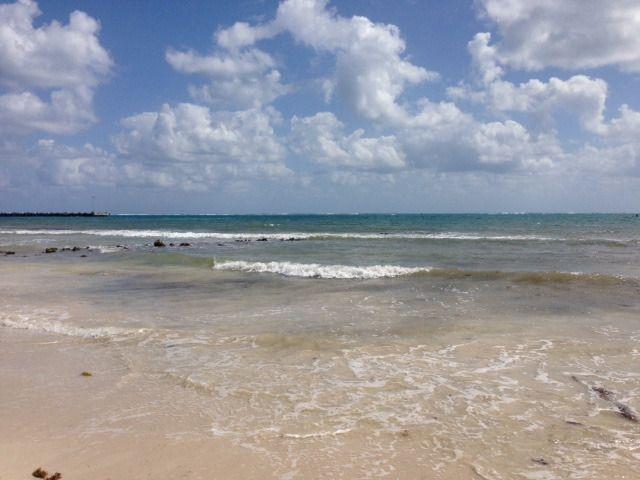 8 de 9: terreno frente al mar en puerto morelos