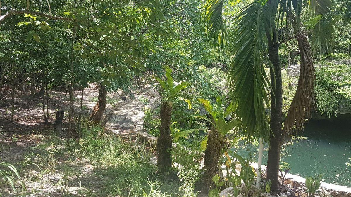 1 de 19: terreno con cenote en venta cancun sur