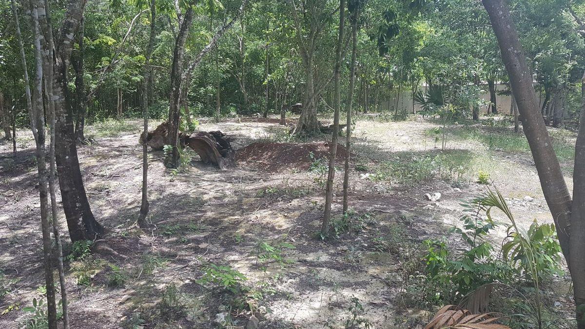 2 de 19: terreno en venta en la zona sur de cancun