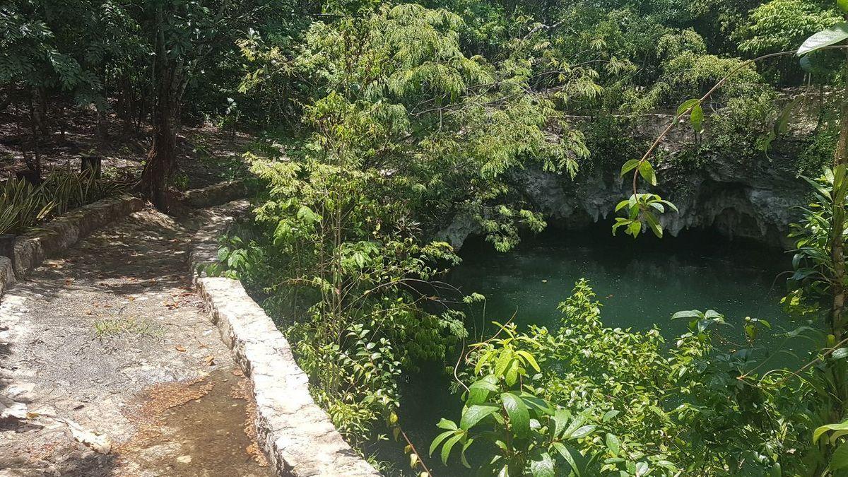 14 de 19: terreno con cenote en el sur de cancun