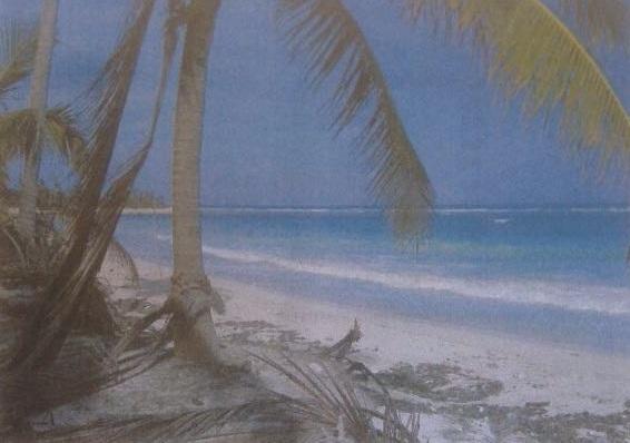 3 de 3: predio rustico venta tulum con playa