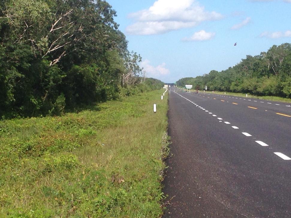 1 de 7: Terreno en Venta Felipe Puerto Carrillo