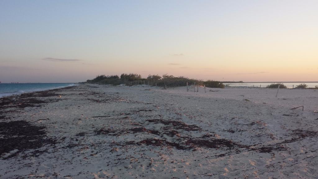 4 de 15: venta terreno con playa en isla blanca