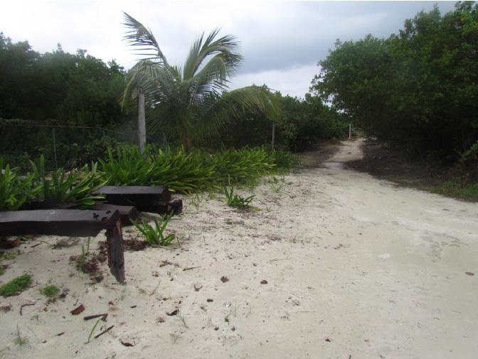2 de 12: terreno en isla mujeres