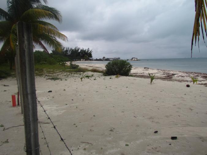 4 de 12: terreno co frente de playa en isla mujeres