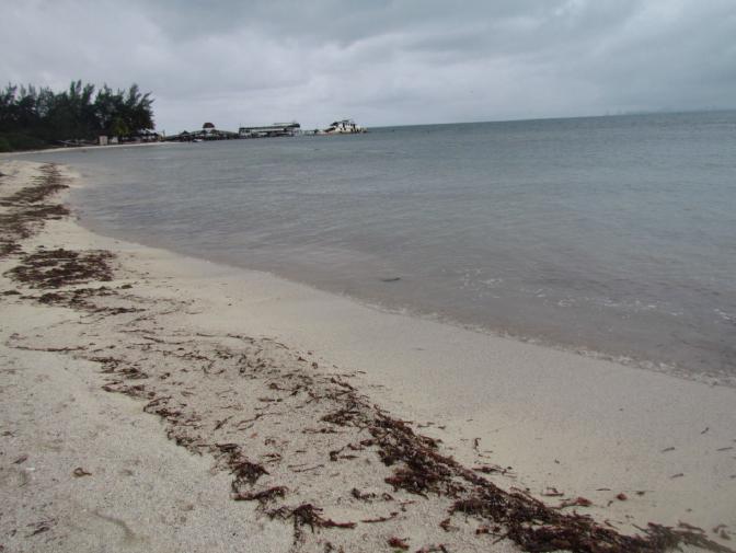 9 de 12: terreno en isla mujeres