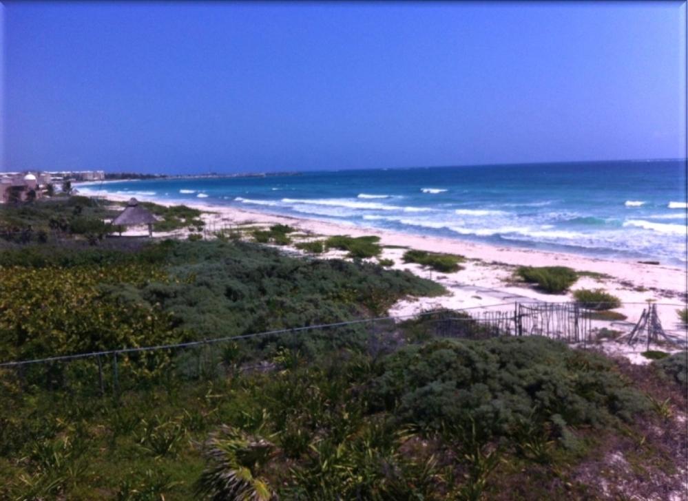 3 de 15: Terreno con playa en venta Puerto Morelos