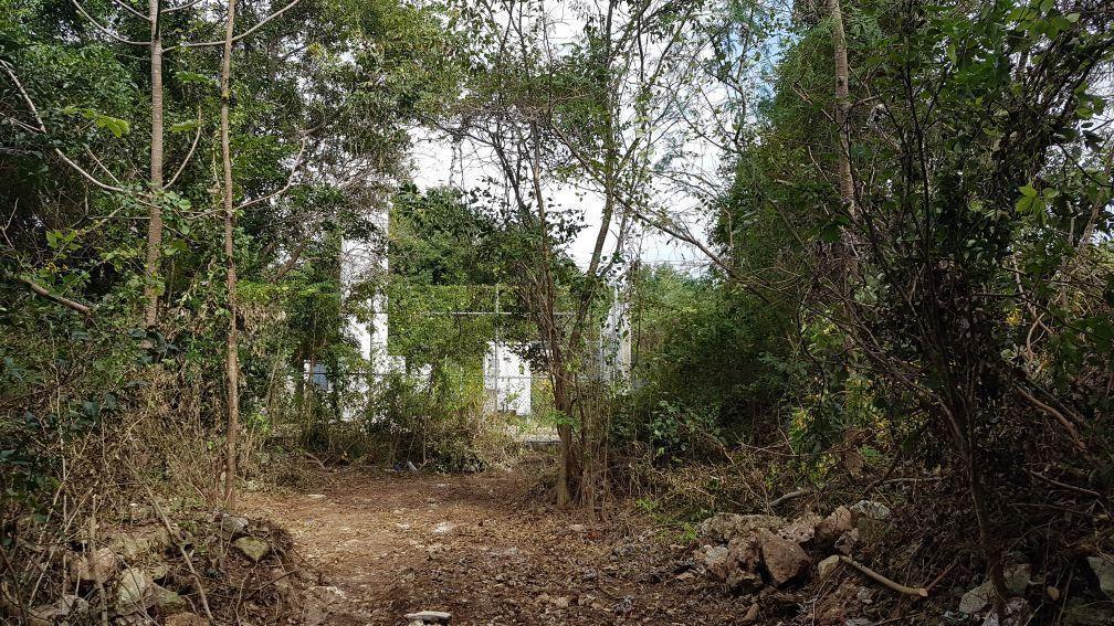 7 de 8: Terreno en venta Cancun