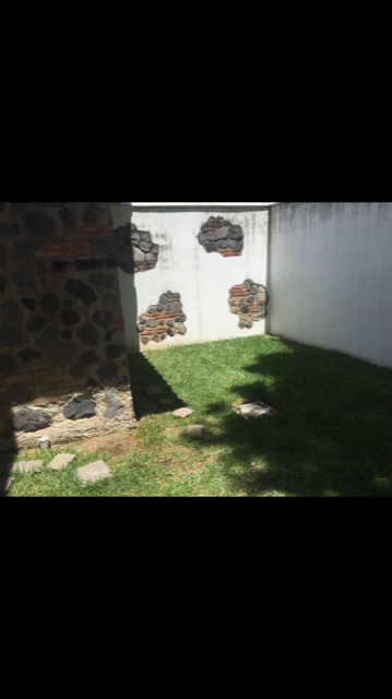 6 de 6: Jardín interno