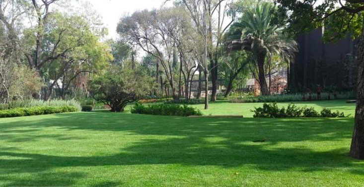 4 de 16: Jardín