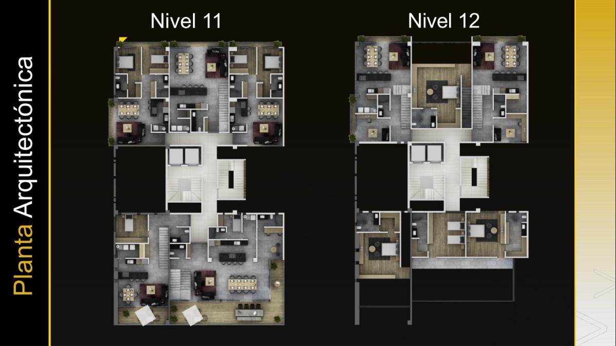 14 de 26: Nivel 11 - 12