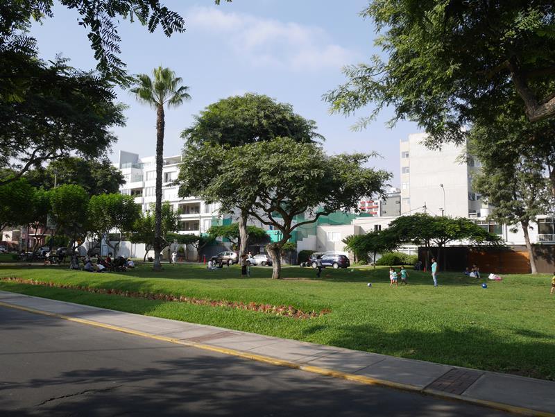 9 de 17: Foto del Exclusivo Parque Melitón Porras