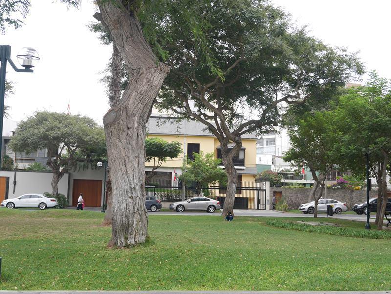 5 de 11: Foto de la casa donde se construye proyecto (amarilla)
