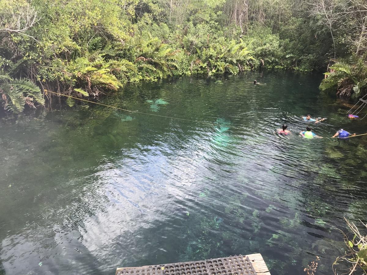 38 of 40: cenotes a solo 1 km