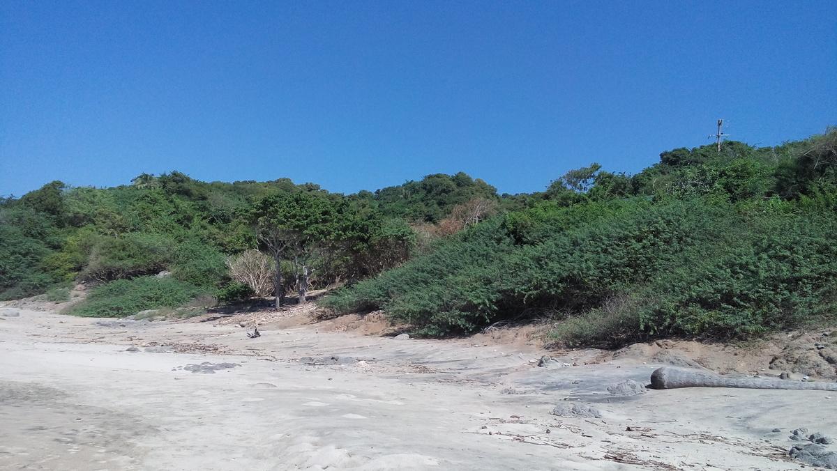 5 de 7: vista de la zona del terreno desde la playa