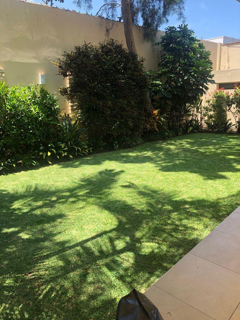 2 de 19: Hermoso jardín.