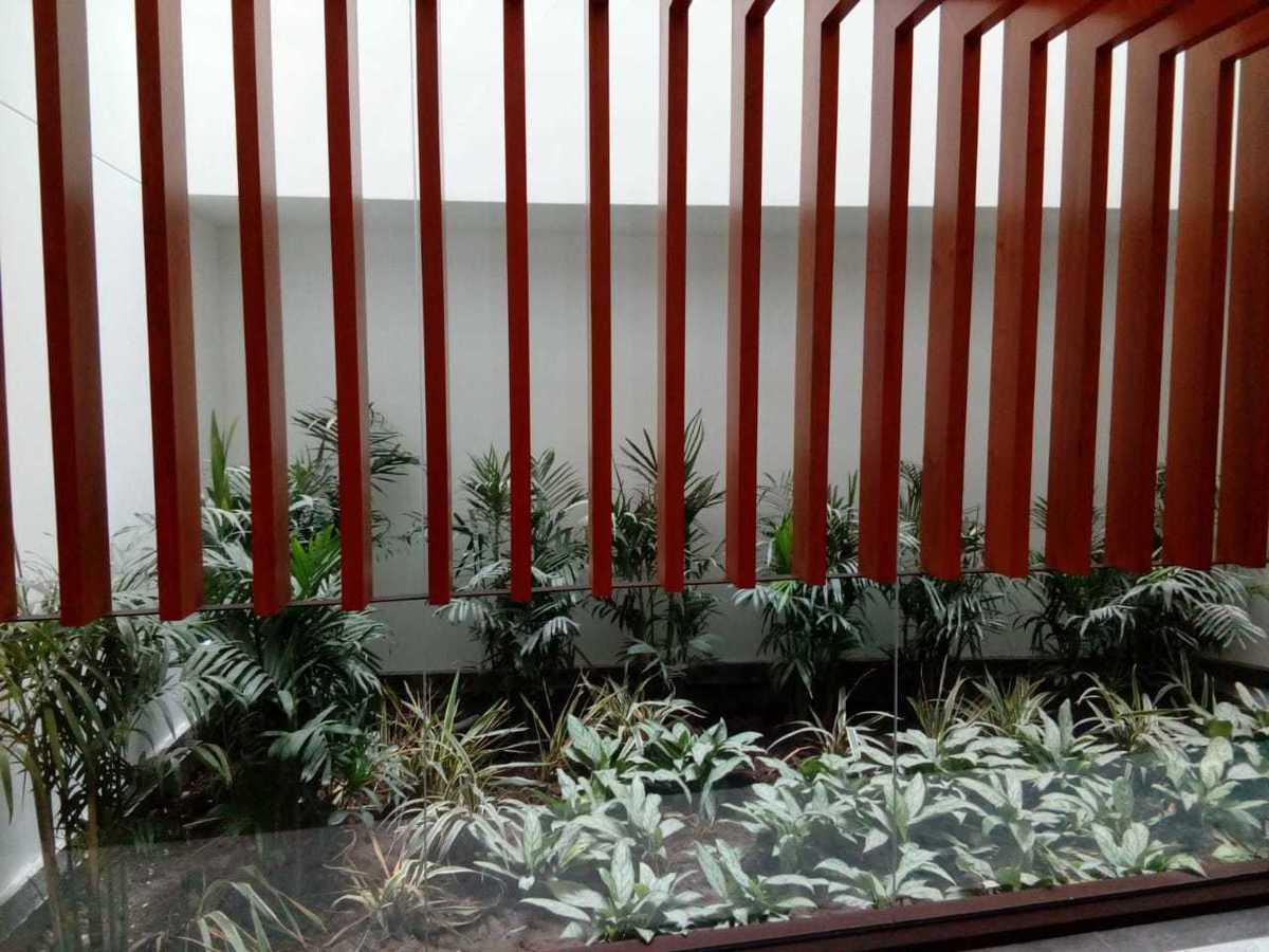 6 de 31: Jardineras interiores en el lobby