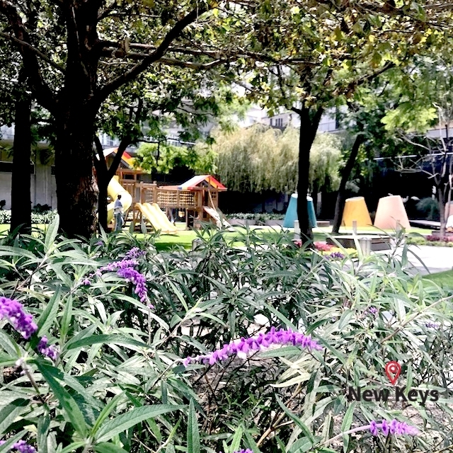 29 de 38: Jardines de Parques Polanco, Vista 1