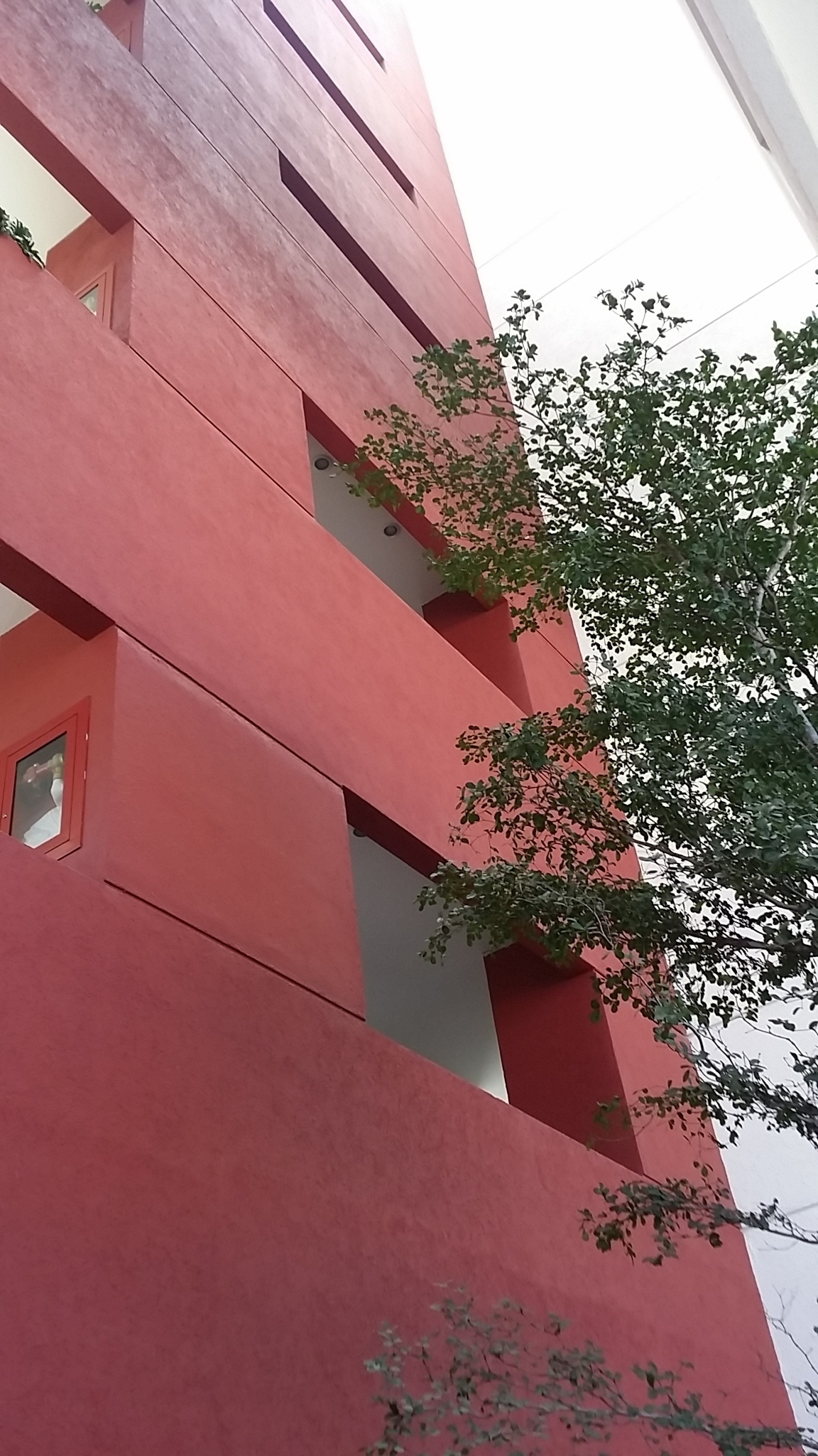 1 de 43: Departamento en Edificio Pequeño
