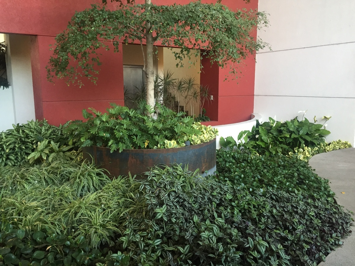 9 de 43: Lobby de ingreso edificio Xantus