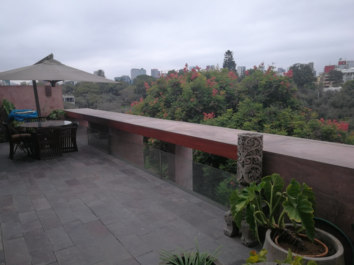 27 de 31: Maravillosa Terraza Privada con vista al Bosque El Olivar