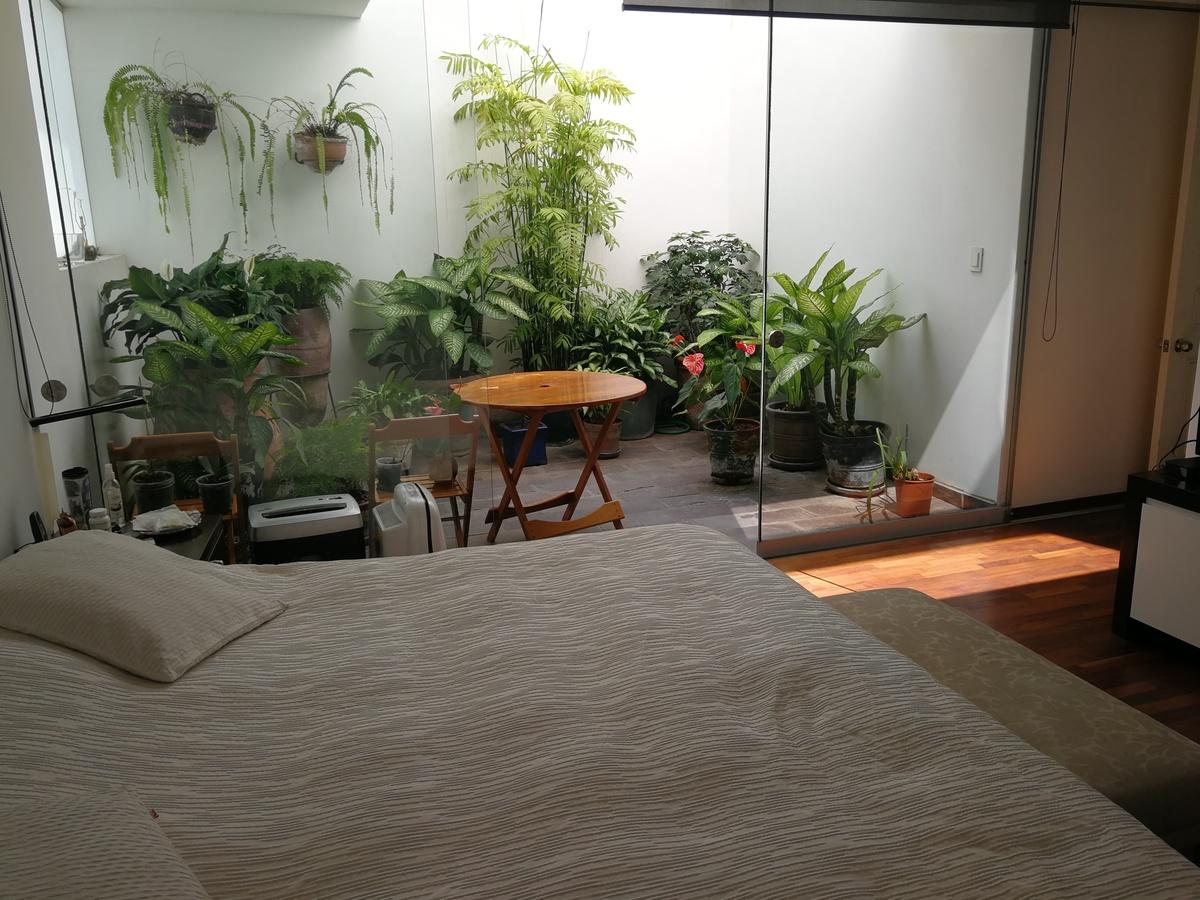 23 de 31: Dormitorio Principal con patio de luz privado