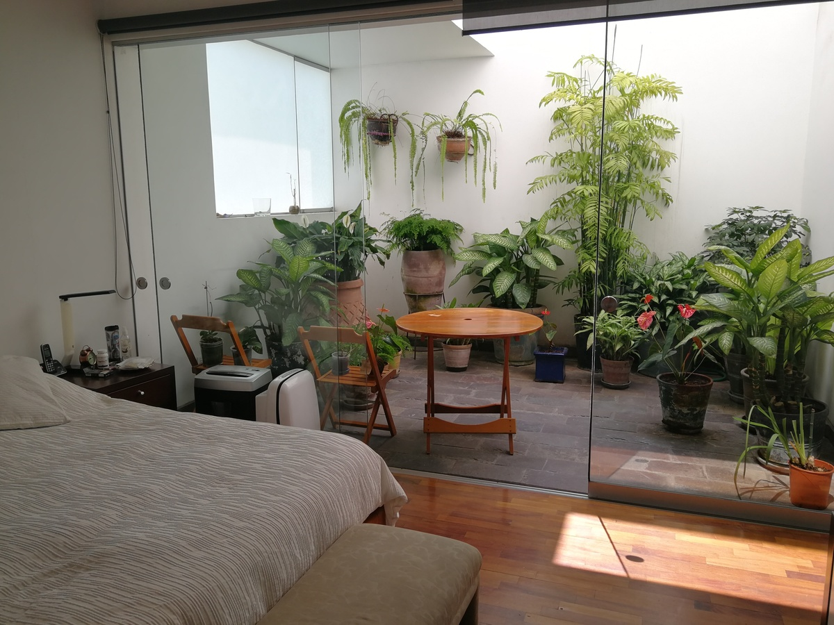 24 de 31: Dormitorio Principal con patio de luz privado
