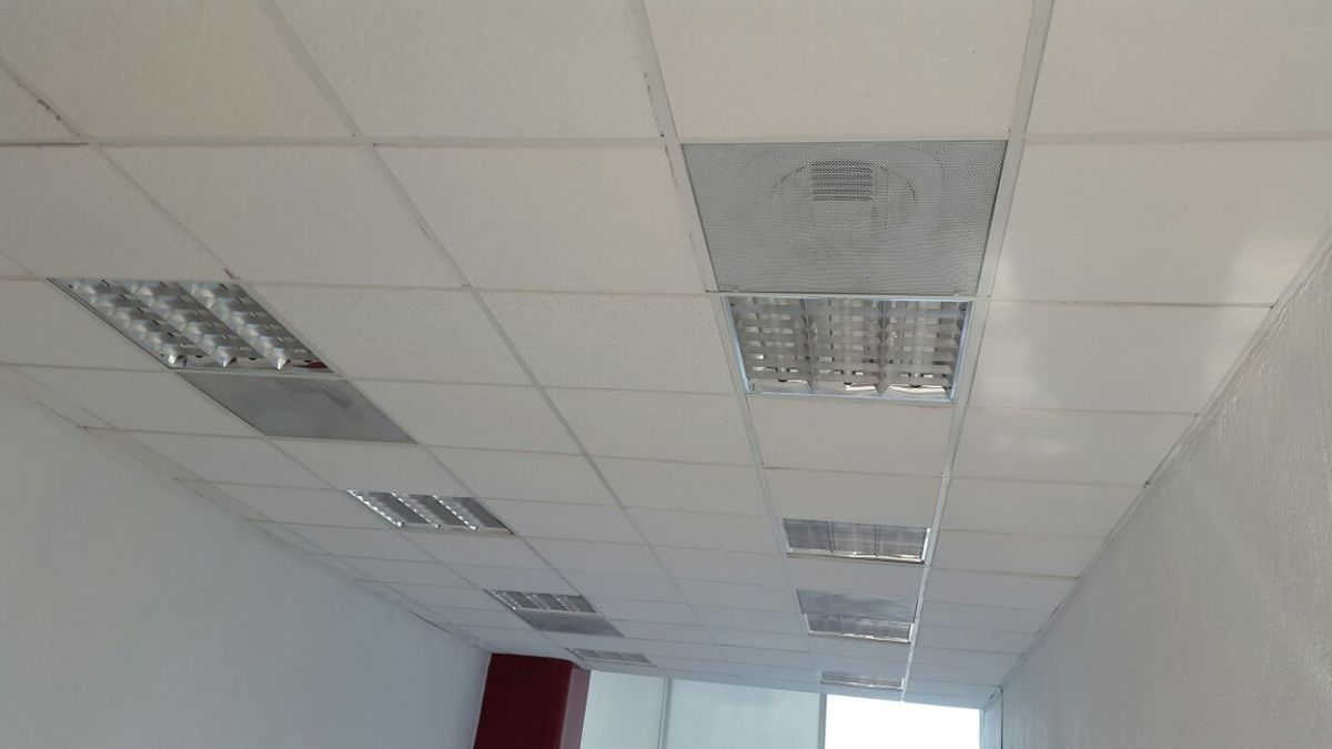 11 de 12: Paneles de luz en techo