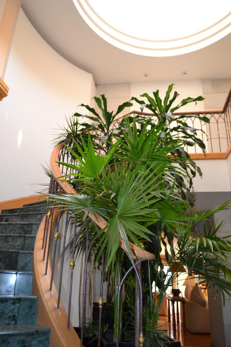 4 de 47: Escaleras a segundo piso