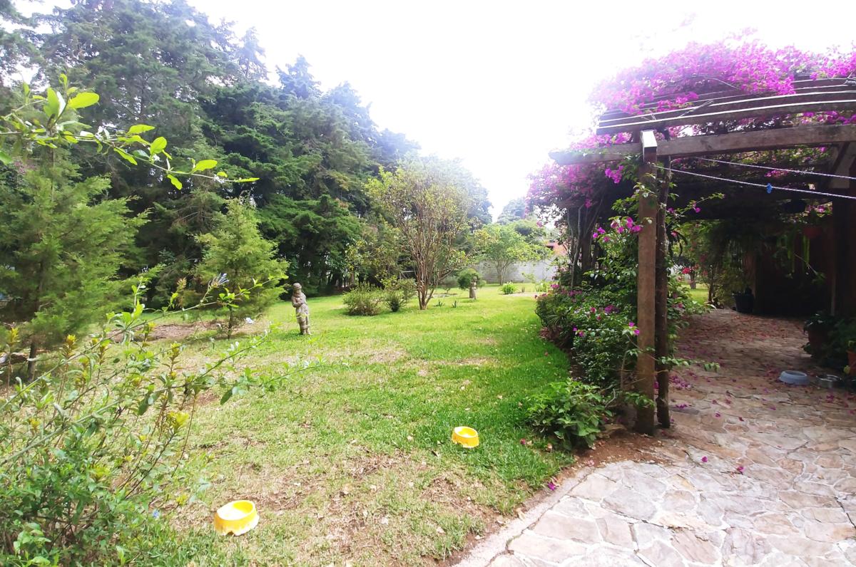 20 de 23: vista del jardín