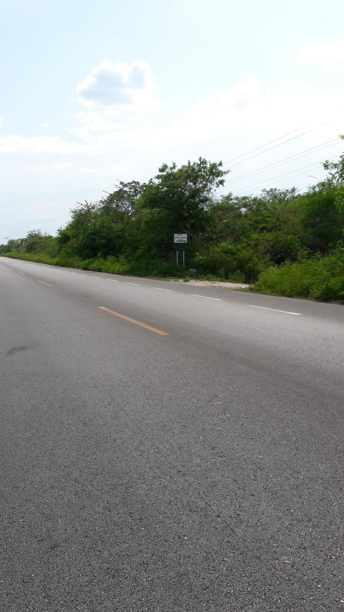 1 de 1: Sobre carretera.