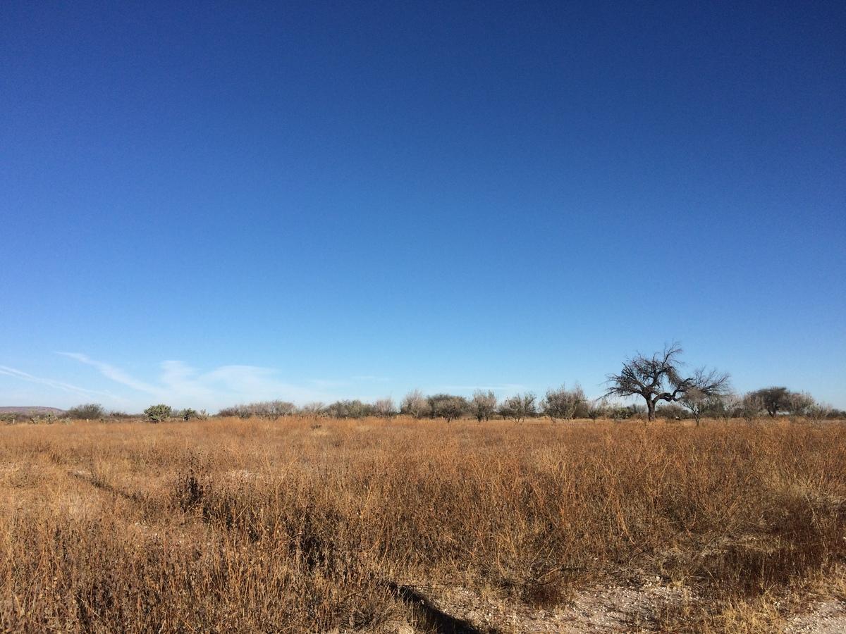 3 of 7: Flat Land