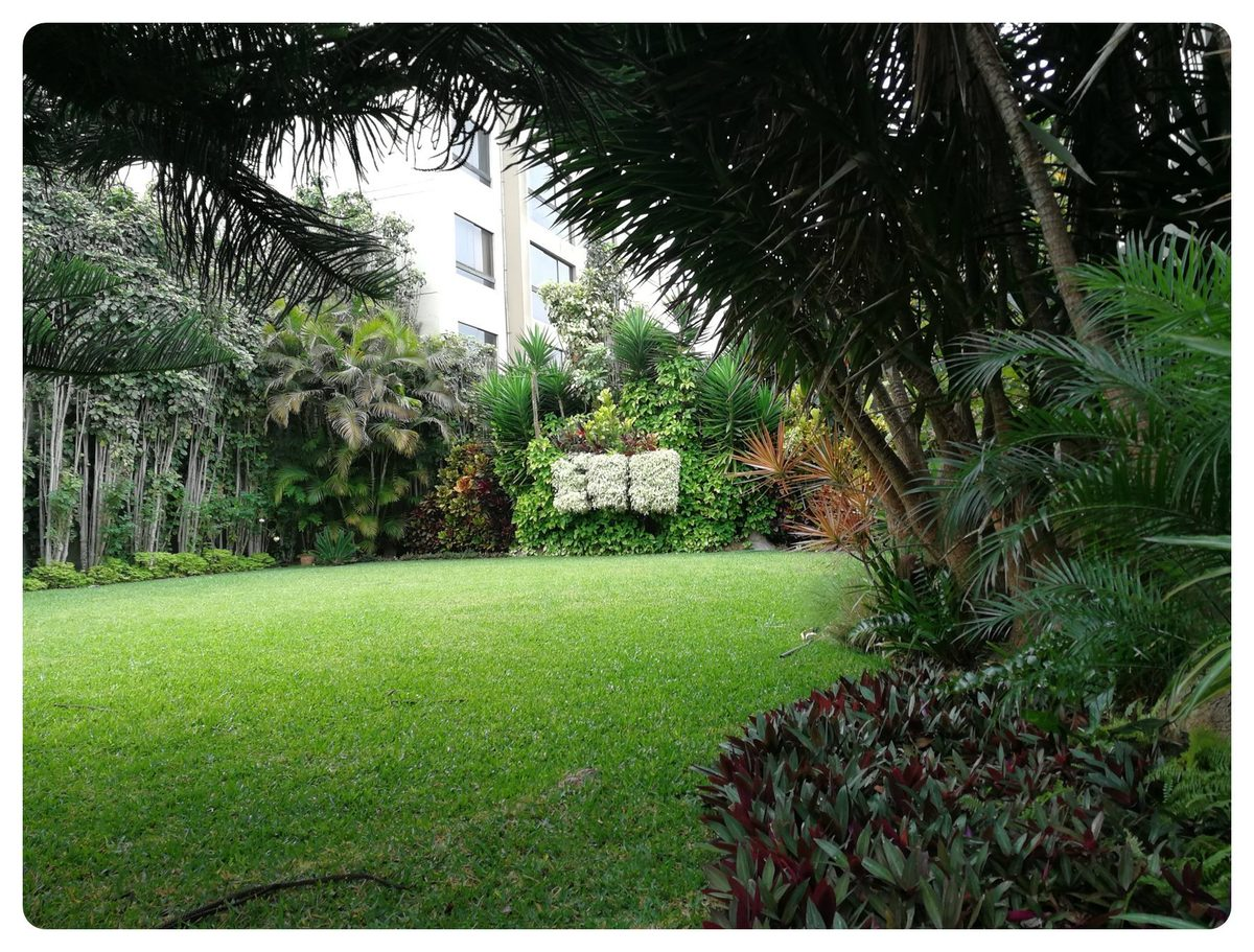 5 de 12: Maravilloso jardín