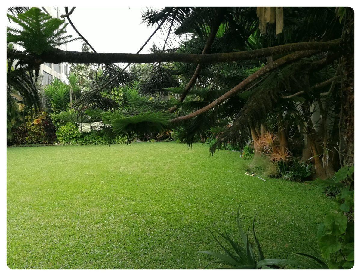6 de 12: Maravilloso jardín